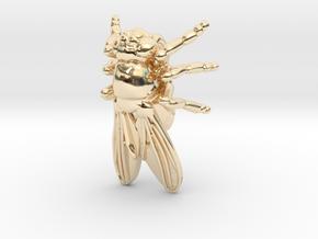 Drosophila Fruit Fly Pendant - Science Jewelry in 14K Yellow Gold