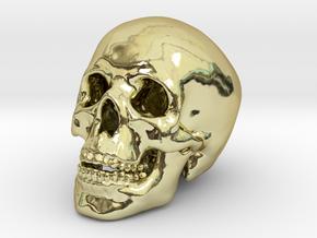 Human Skull - medium in 18k Gold Plated Brass