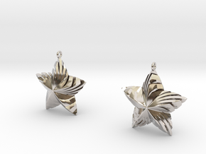 Tortuous Stars Earrings in Rhodium Plated Brass