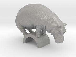 Hippo in Aluminum