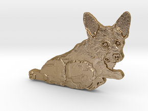 Corgi Consideration of Action in Polished Gold Steel