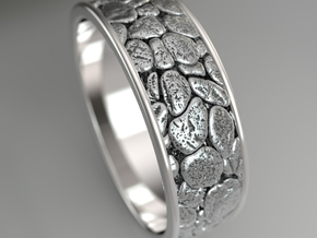 Publes in Fine Detail Polished Silver