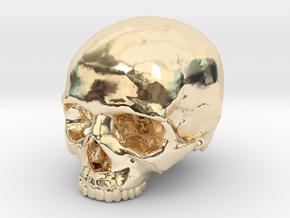 Skull    30mm width in 14k Gold Plated Brass