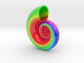 Seashell Tangent 01 Color Sculpture in Glossy Full Color Sandstone