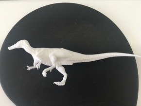Baryonyx middle size in White Strong & Flexible
