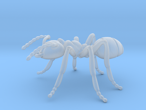 Ant in Smooth Fine Detail Plastic