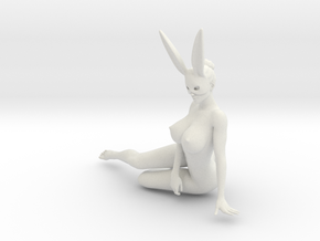 Bunny lady 012 1/10 in White Natural Versatile Plastic
