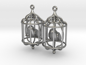 Bird in a Cage 02 in Interlocking Raw Silver