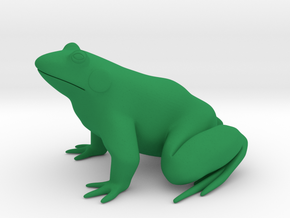 Frog in Green Strong & Flexible Polished