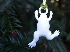 Xenopus Ornament - Science Gift in White Processed Versatile Plastic