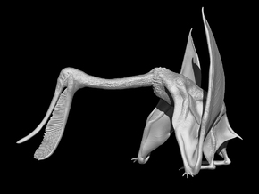 Pterodaustro (1:4 scale model) in White Natural Versatile Plastic