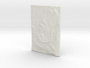 Gorilla Pendant in White Natural Versatile Plastic