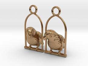Lovebird Earrings in Polished Brass