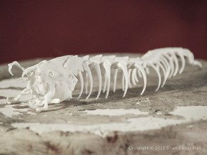 Mongolian Death Worm in White Natural Versatile Plastic