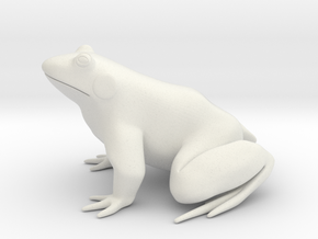 Frog, solid in White Strong & Flexible