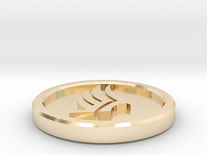 Paragade Coin in 14k Gold Plated Brass