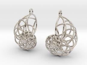 Conchoid Earrings in Platinum