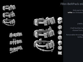 FB01-BeltPack-06s  6inch in White Strong & Flexible Polished