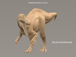 Suchomimus 1:72 v1 in White Natural Versatile Plastic