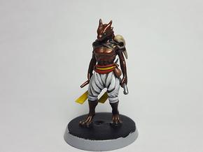 Dragonborn Rogue in Black Hi-Def Acrylate