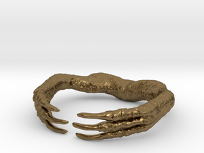Raptor Claw in Natural Bronze