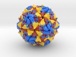 Polio Virus in Coated Full Color Sandstone