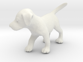 1/12 Puppy in White Natural Versatile Plastic: 1:12