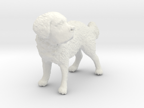 1/24 Saint Bernard (Big Dog) in White Natural Versatile Plastic