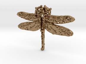 Dragonfly 3 in Natural Brass