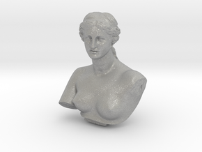 Venus de Milo in Aluminum: Medium