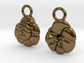 Ammonia tepida Earrings - Science Jewelry in Polished Bronze