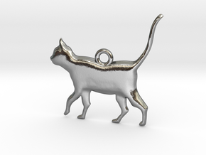Schrödinger's Cat Pendant in Polished Silver