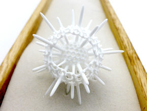 Spiky Spumellaria Sculpture - Science Gift in White Strong & Flexible Polished: Small