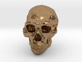 Lanyard : Real Skull (Homo erectus) in Natural Brass