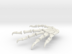 Komodo Rigth Foot Back 1:5 Scale in White Natural Versatile Plastic