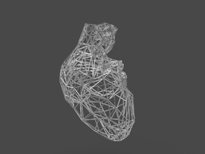 lattice human heart in White Natural Versatile Plastic