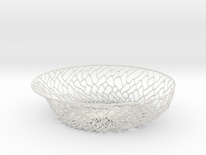 Organic Plate in White Natural Versatile Plastic