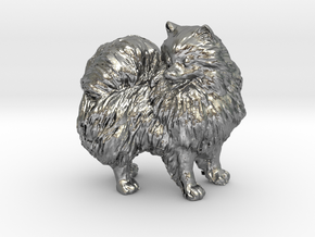 Custom Pomeranian Dog in Natural Silver