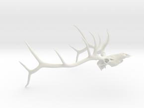 Euro Bull Elk, JB in White Natural Versatile Plastic