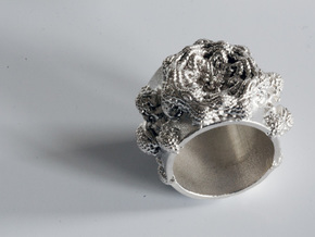 Mandelbulb Ring - Sinus Variation - 18mm in Raw Silver