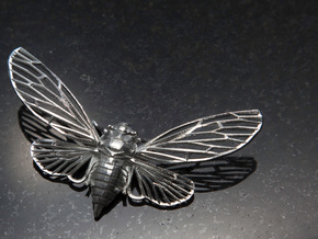 Sterling Silver Cicada in Natural Silver