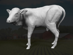 Ankole-Watusi 1:6 Calf in White Strong & Flexible