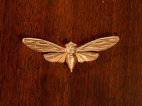 Raw Brass Cicada in Natural Brass