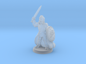Sword warrior in Smooth Fine Detail Plastic