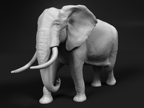 African Bush Elephant 1:16 Walking Male in White Natural Versatile Plastic