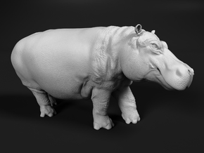 Hippopotamus 1:22 Walking Male in White Natural Versatile Plastic