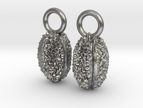 Willow Pollen Earrings - Nature Jewelry in Natural Silver