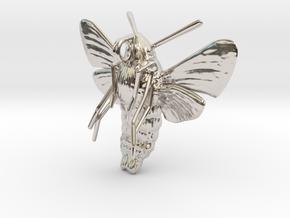 Hummingbird Hawk-Moth Pendant (solid version) in Rhodium Plated Brass