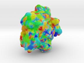 Interferon Regulatory Factor 2 in Full Color Sandstone