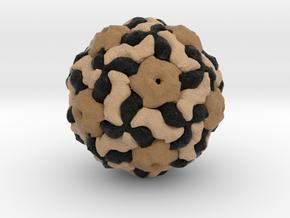 Ljungan Virus in Full Color Sandstone